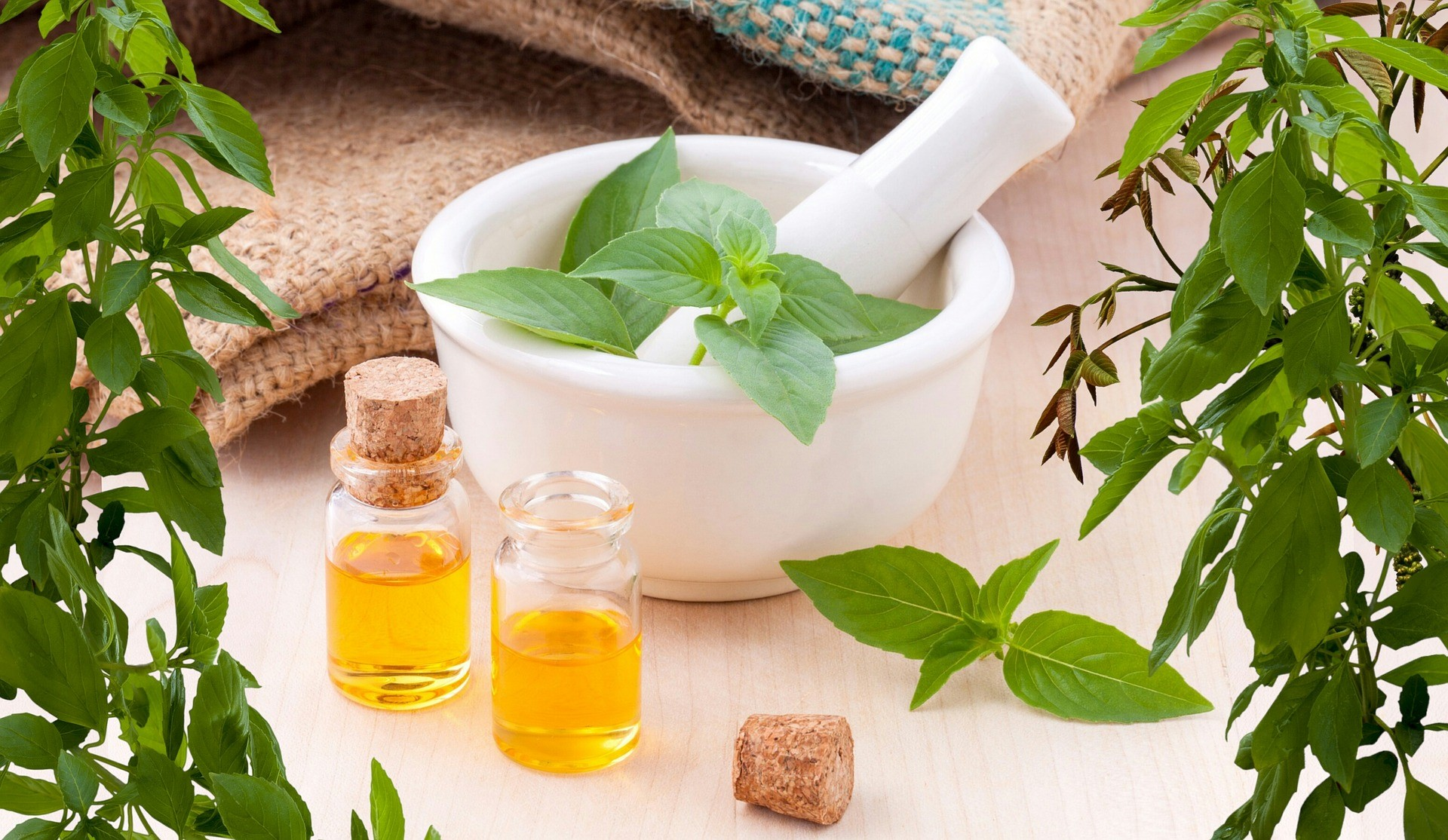 Cancer Treatment with Traditional Medicine