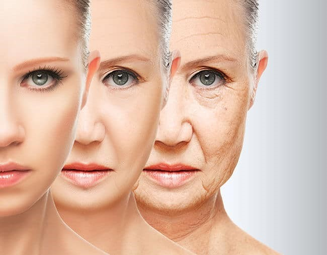 Treatment of skin wrinkles with traditional medicine