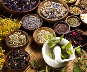 15 Amazing Medicinal Plants In Traditional Medicine